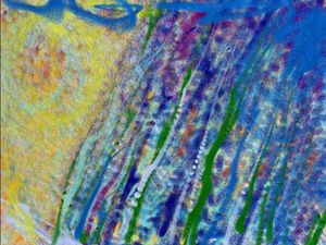 Rainstorm 1 - JupiterFreeman