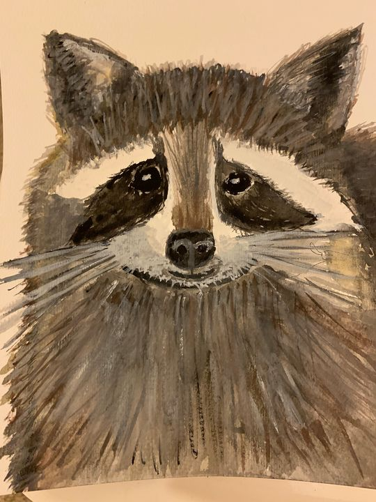 The Raccoon - Sharon Powell Slaughter