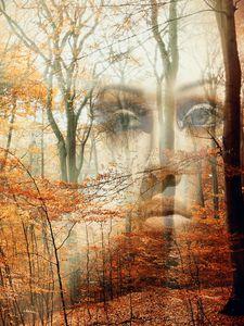 Behind the autumn - Gabi Hampe