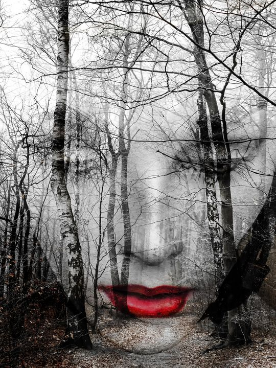 The face in the forest - Gabi Hampe