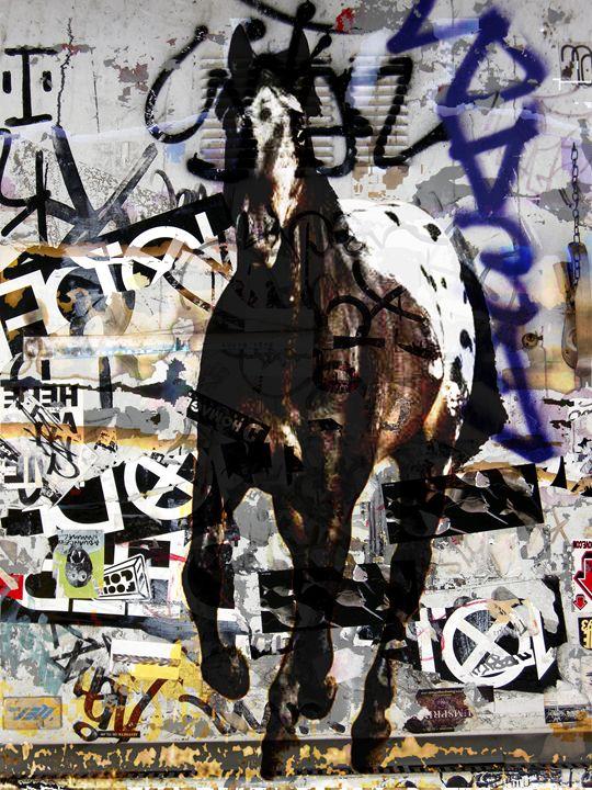 WARHORSE - TOM GREAVES