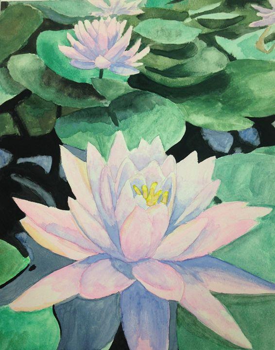 Lotus Flowers - Starlu