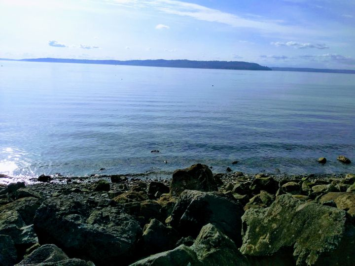 Vashon Island - Hazel Wonder
