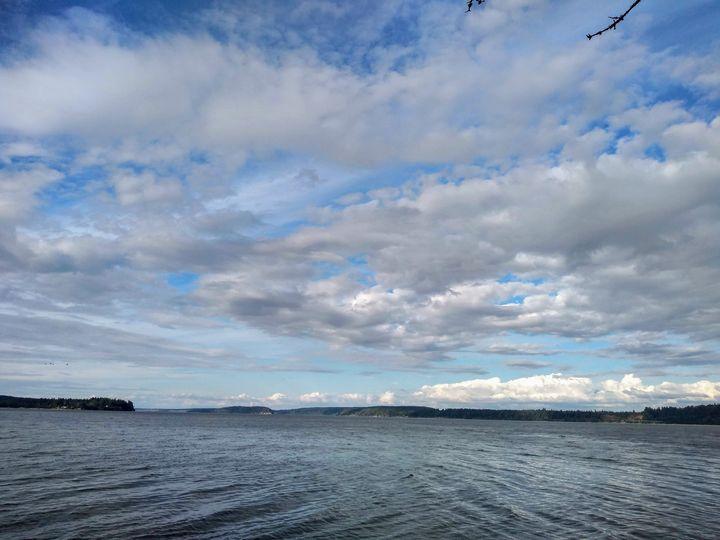 Nisqually Reach at the Puget Sound - Hazel Wonder