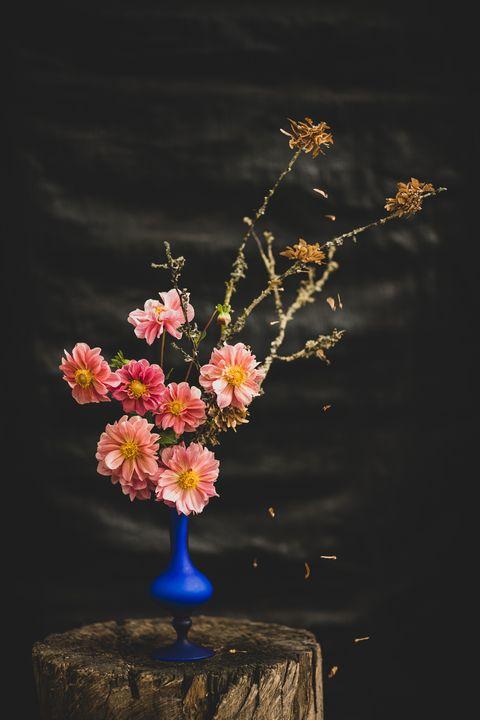 Blue Vase and Salmon - Joe Dreyer Art.