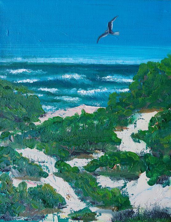 Dunes gaze - Rachel Dziga