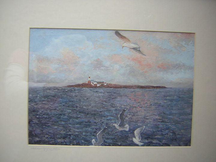 Coquet Island, Northumberland - northumberland images