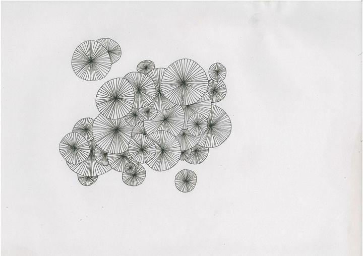 Circles - Julie Hammer