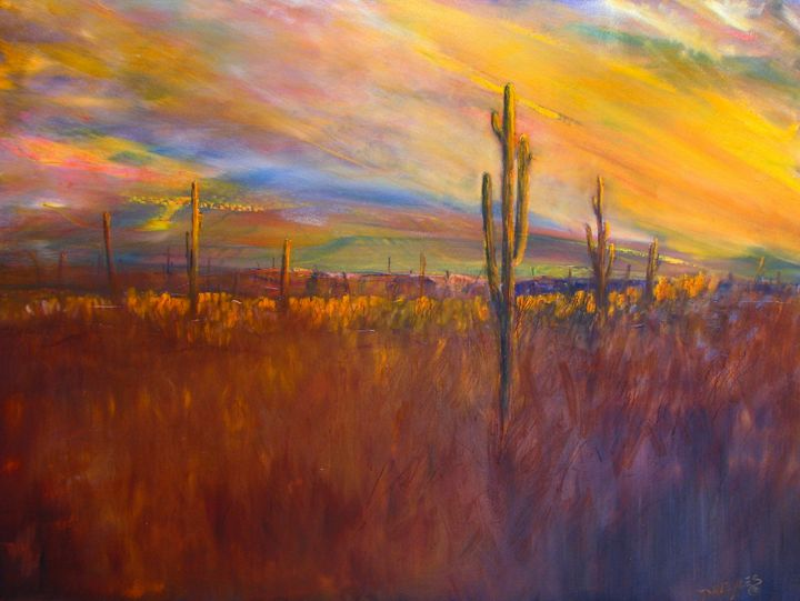 Desert Sunset Tucson Arizona USA - Dave E. Iles Fine Art