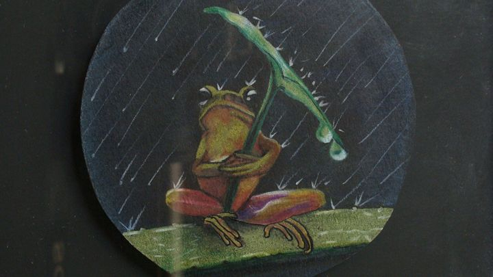 Fred The Frog - Unum Gallery