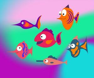 Cute aquarium fish