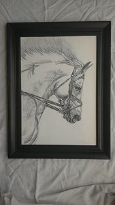 White horse Pencil work
