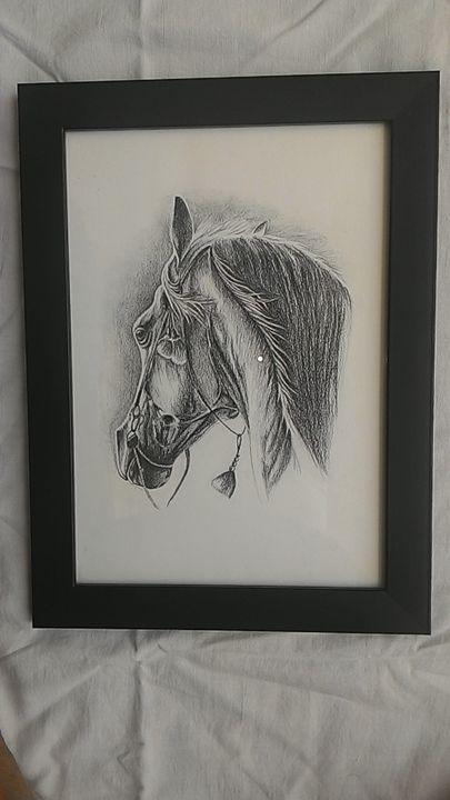 Black Horse Pencil Sketch - Mrudula