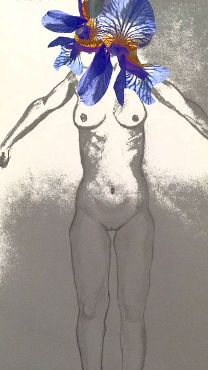 Iris - Katie Kaboom Art