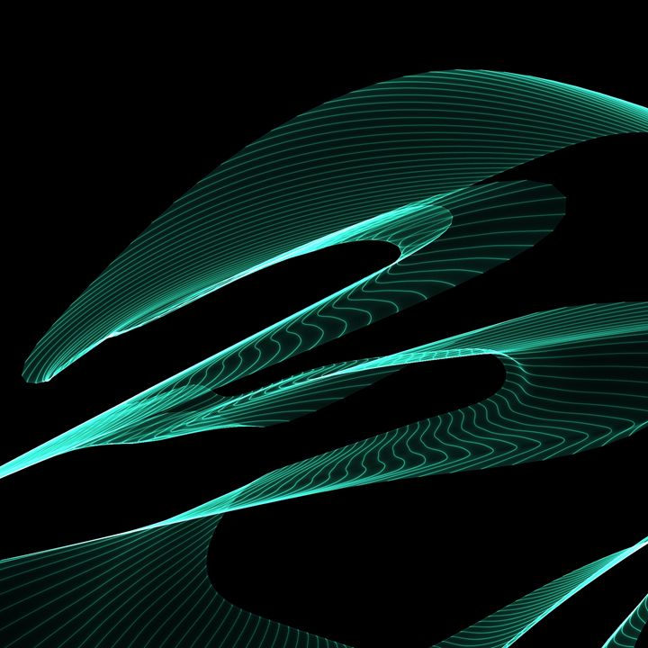 Snakeskin - P.I.A. Creative
