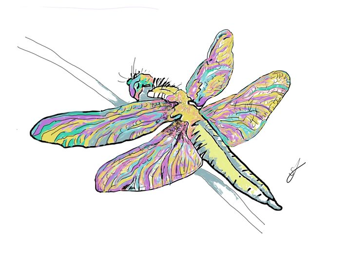 drawing of a dragonfly - artline