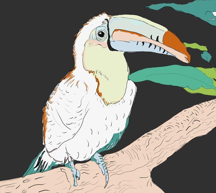 toucen parrot - artline