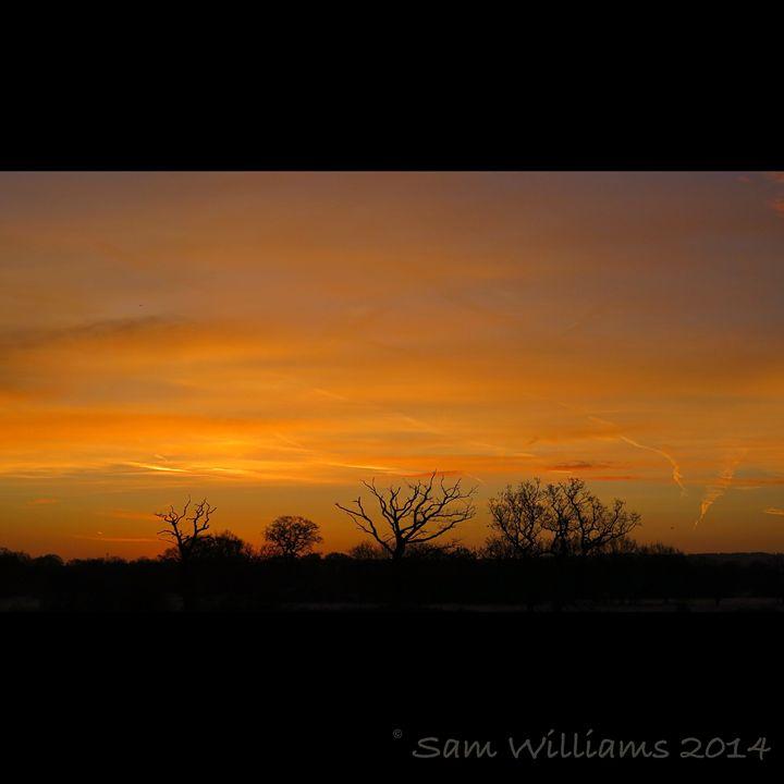 Orange Flickers - Artypix Sam Williams