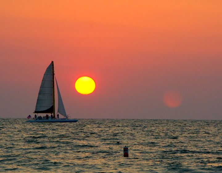 Sun Set Sail - GullPhoto Art
