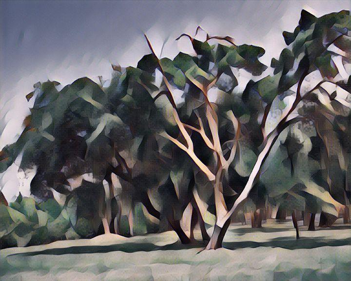The Tree - GullPhoto Art