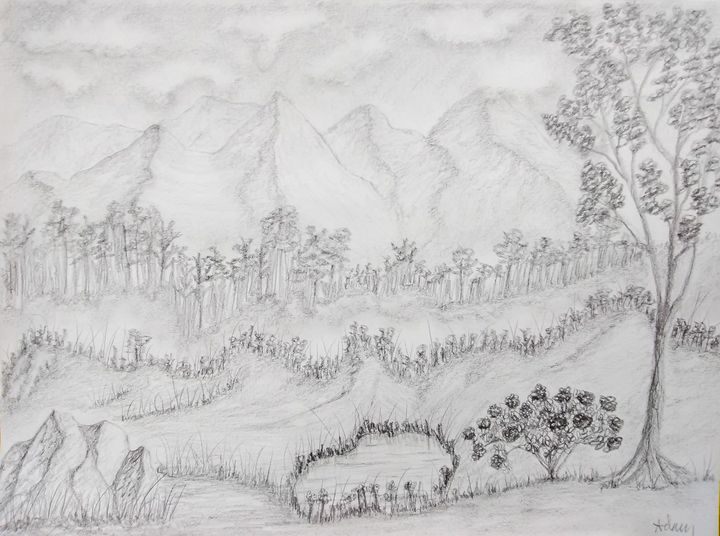 Rodidendrin Bush Landscape - Landscape & Abstract Pencil Art