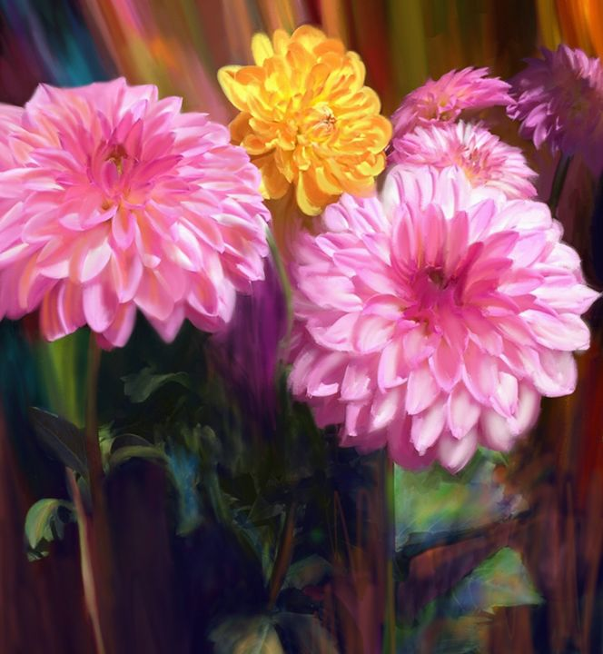 Rainbow Dahlias - Julianne Ososke