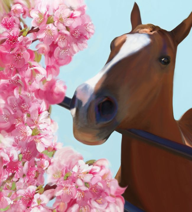 Horse Pink Blossoms - Julianne Ososke