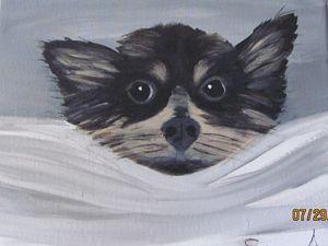 Wide Eyed - Sue's Art