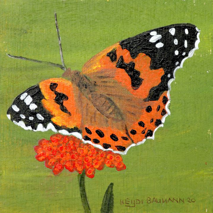 Butterfly - 02 - Heijdi's fantastic painted World