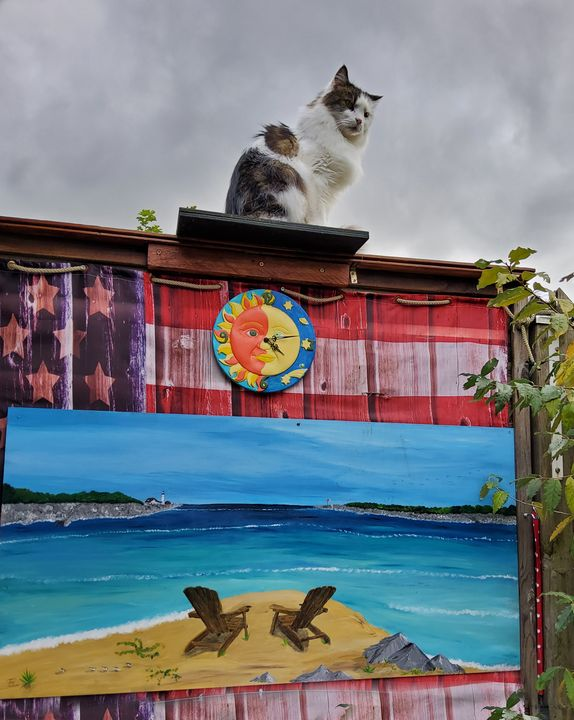 Keanu on observation post - Heijdi's fantastic painted World