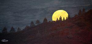 Autumn full Moon - Heijdi's fantastic painted World