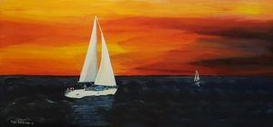 Evening sailing trip