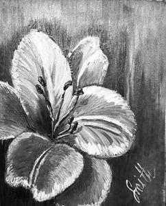 Original Flower Oil Painting, Canvas