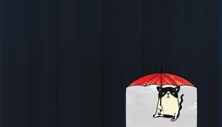 Cat in the rain - Alvaro Núñez