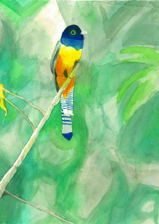 Tropical Bird - Astral Kepeire