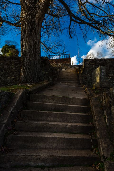Climbing to the Top - James L Bartlett Photography