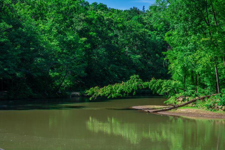 Summer on the Creek - James L Bartlett Photography