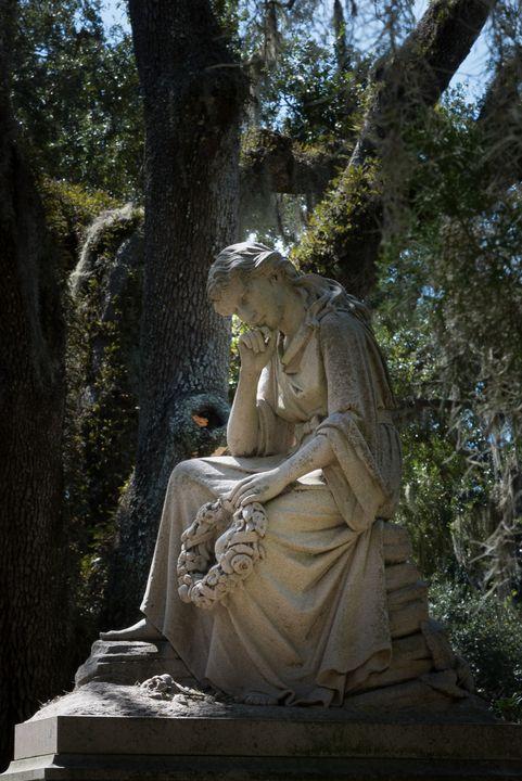 Contemplation - James L Bartlett Photography