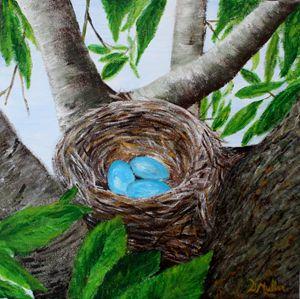 A Robin's Nest