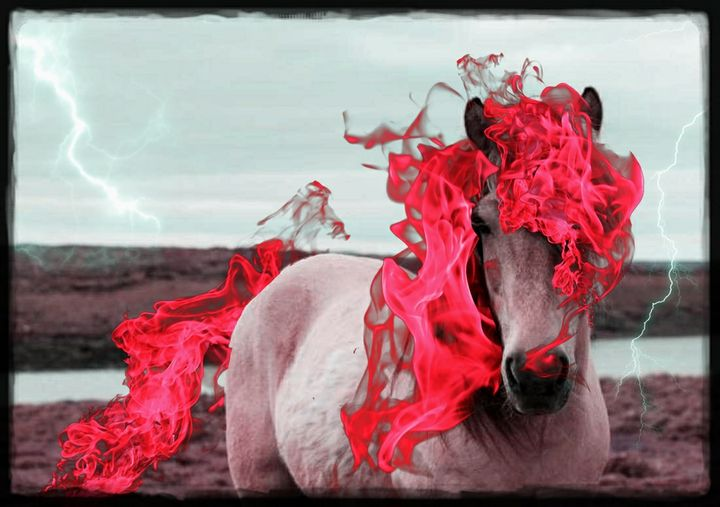 Apocalypse Horse - Valkyrie Designs