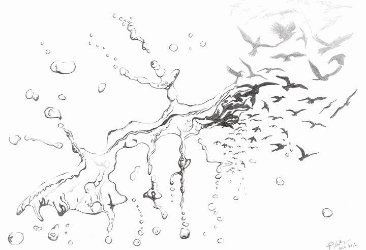 Water Birds - Patrick MacPherson