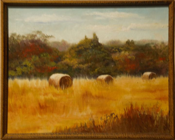 Hay Fields - Arts d'Tryon Studio