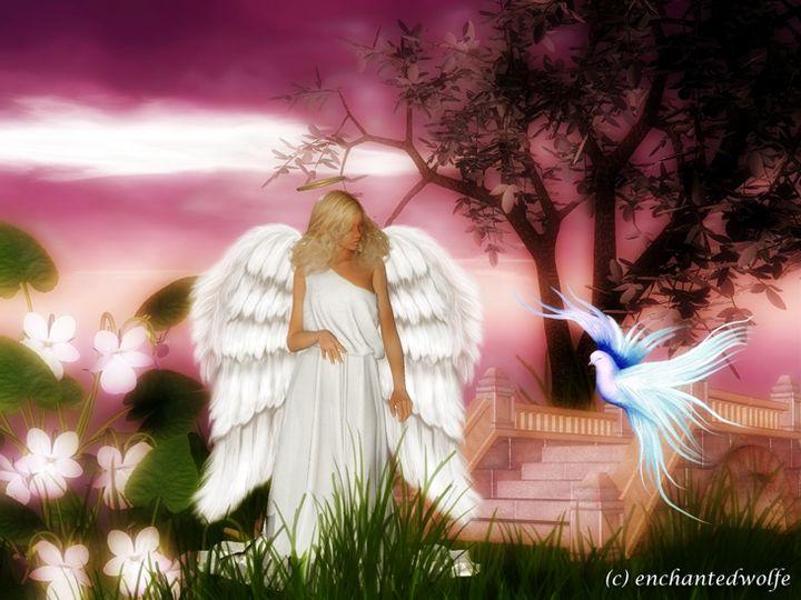 Angel - EnchantedWolfe's Designs