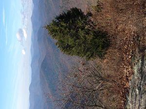 Mountain Side - NTLee