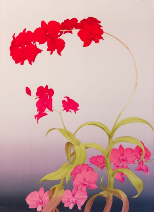 Red Orchid - B and S Finearts