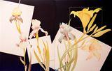 Kenneth Bushnell Floral Series
