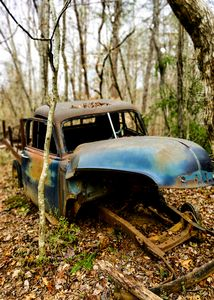 Truck in the Woods 2