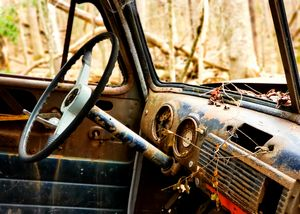 Truck in the Woods 4