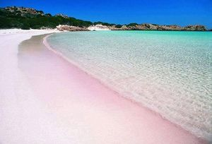 Pink sands of Harbor Island