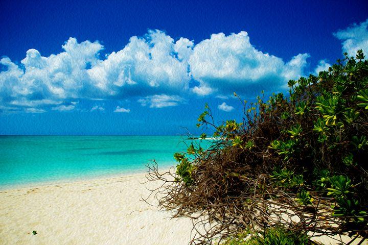 Beach Entrance - wanderlust